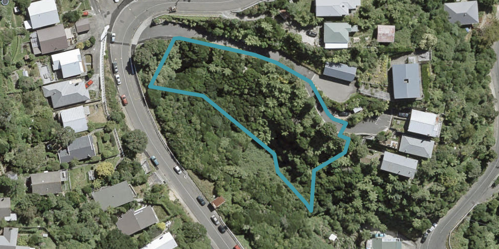 72 Farnham Street, Mornington, Wellington