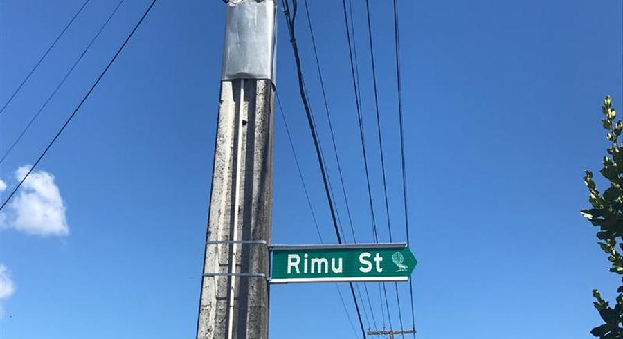 3 Rimu Street, Wallaceville, Upper Hutt