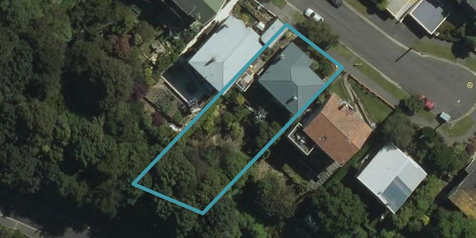 24 Mcgeorge Avenue, Mornington, Dunedin