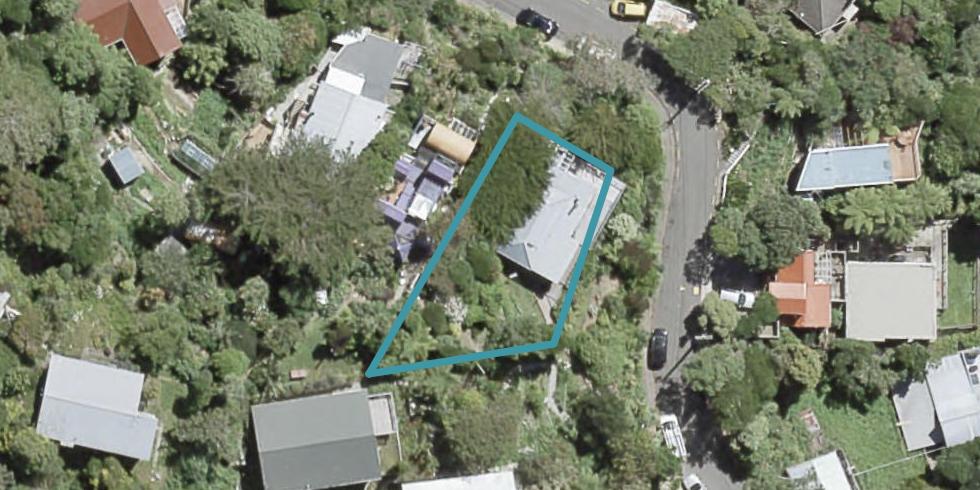 9 Koromiko Road, Aro Valley, Wellington