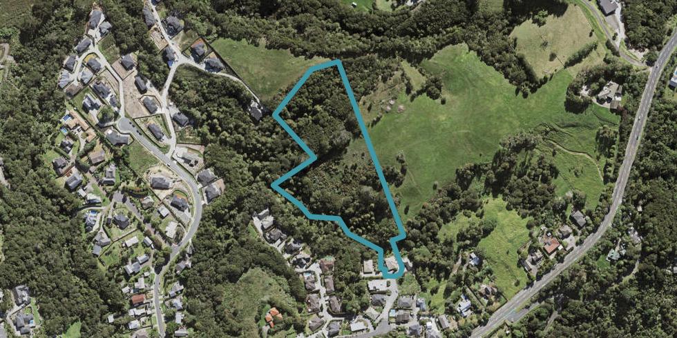19 Viridian Lane, Greenhithe, Auckland